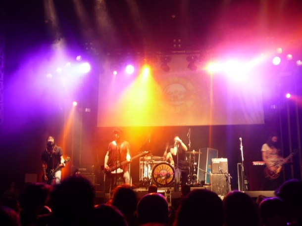 Rock en Familia Gansos Rosas 03